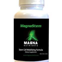 MagnaSTEM